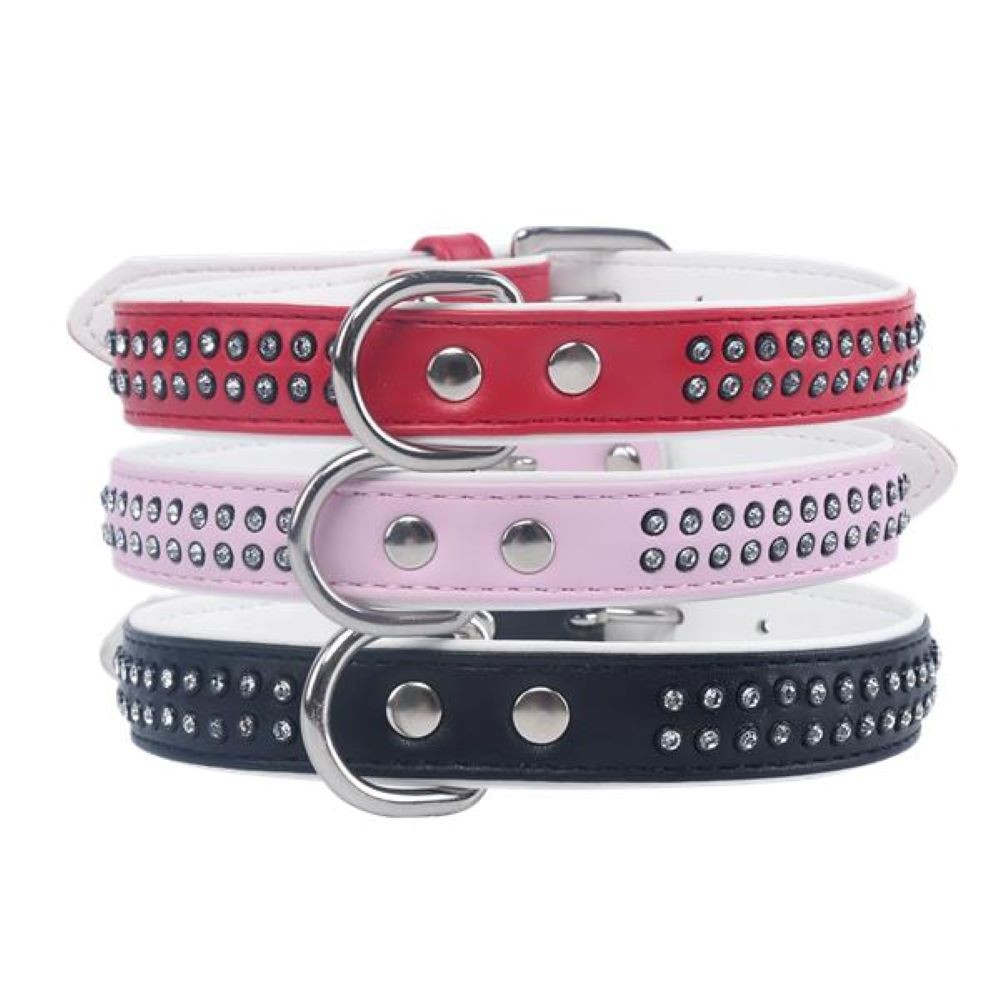 Dog Collar C / Studs